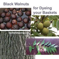 black-walnut-basket-dye.jpg
