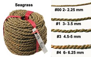 seagrass2012.jpg